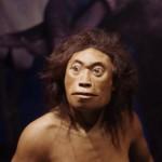 ホビット族?フローレス原人が見つかったおかげで人類学史はハチャメチャになった