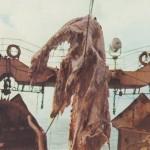 ニューネッシーの正体はウバサメではない!未確認生物の代表格の正体