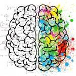 てんかんの知られざる実態!脳体積と厚みで変わる? 医学は一歩前進か?