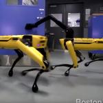 新手のクリーチャー?四足歩行ロボットのシュールな挙動「ボストンダイナミクス発」